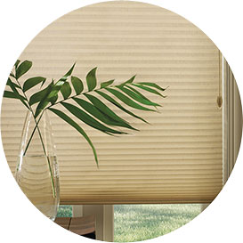 Top 5 Quick Tips for Saving Energy at the Window