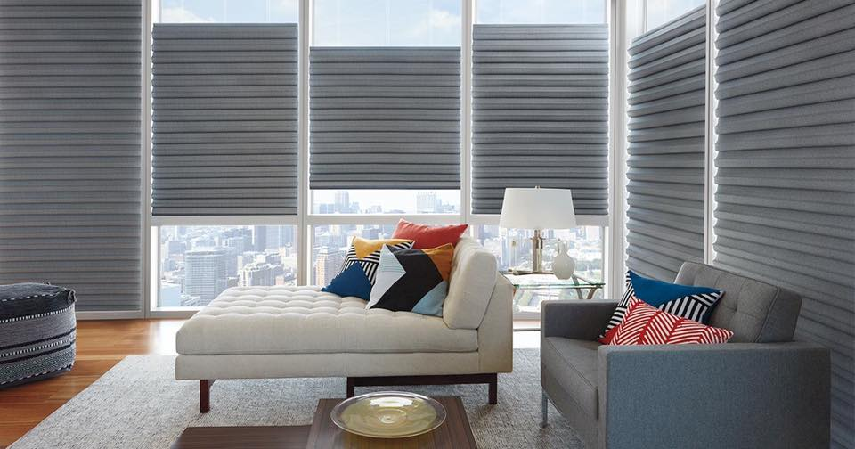 Window Shades, Window Treatments